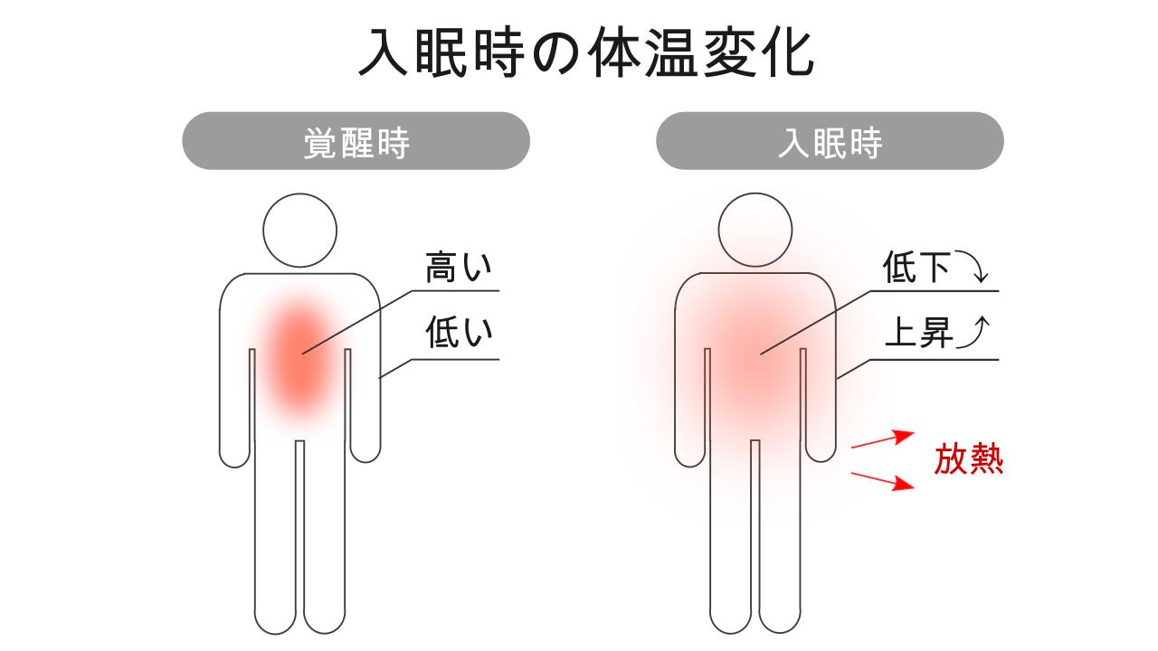 入眠時の体温変化